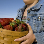 kid carrying basket of strawberries