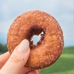 Apple Cider Donuts, photo by BuzzFeed