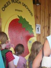 Strawberry Field Trip