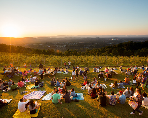 Locals enjoying the sunset and views atop Carter Mountain Orchard during a live music event