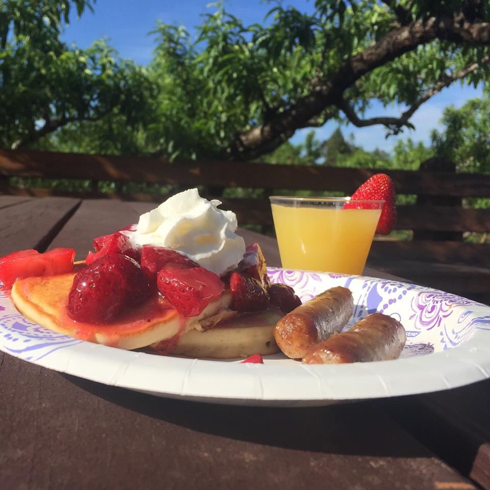 Pancake breakfast with OJ and sausage at Chiles Peach Orchard