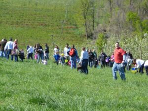 Easter egg hunt at Carter Mountain Orchard (2012)