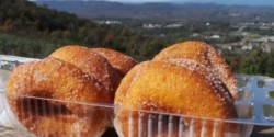 carter mountain orchard donut