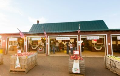 Carter Mountain Orchard farm market