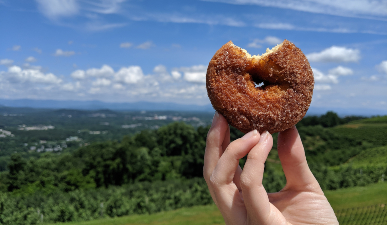 Cider donut with mountain views in background at Carter Mountain Orchard