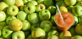 Carter Mountain Apple Cider Slush