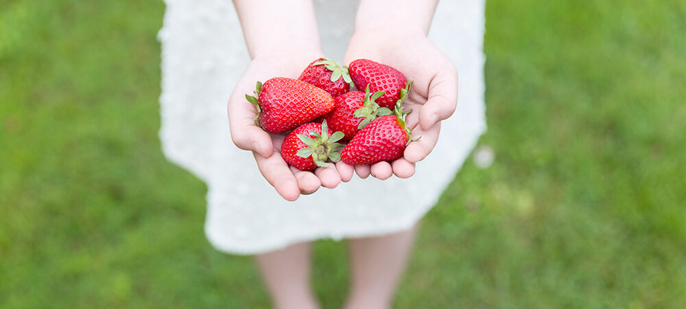 CP: Strawberries Coming Soon