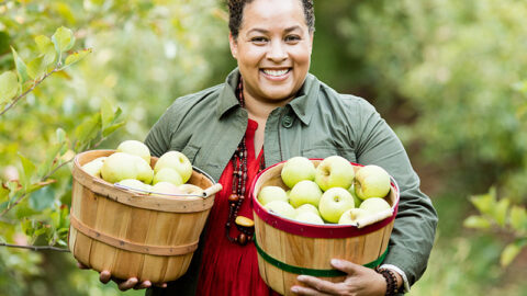 Pick your own apples at Carter Mountain Orchard