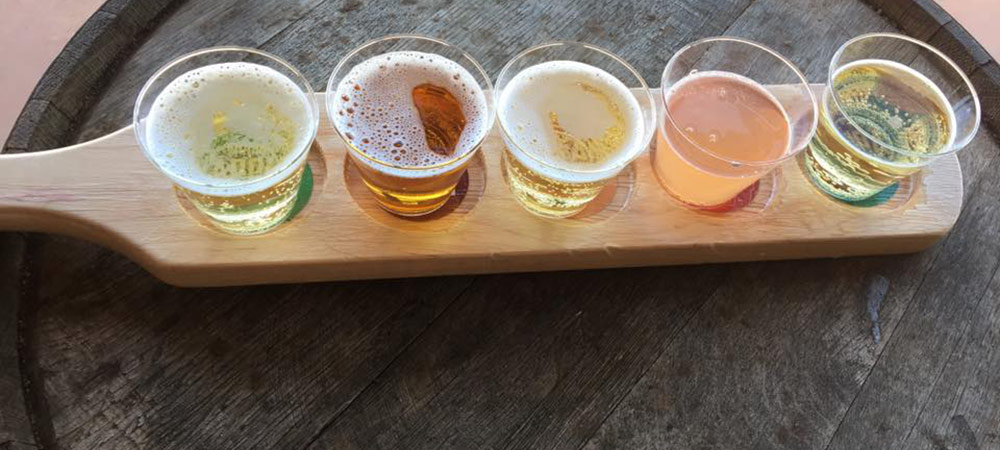 Hard cider flight from Bold Rock Cellar at Carter Mountain Orchard