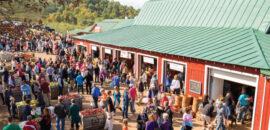 Crowd at Carter Mountain Apple Barn