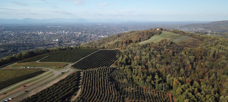 Carter Mountain Orchard aerial view