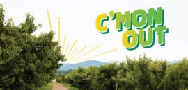 CP-cmonout-featureimage
