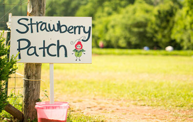 Sign reading Strawberry Patch