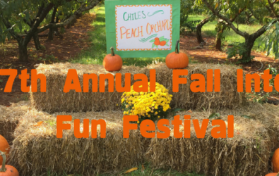Hay Bales with Fall into Fun text