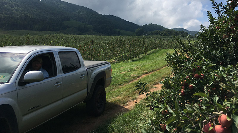 Farmer Henry driving a truck through the orchard