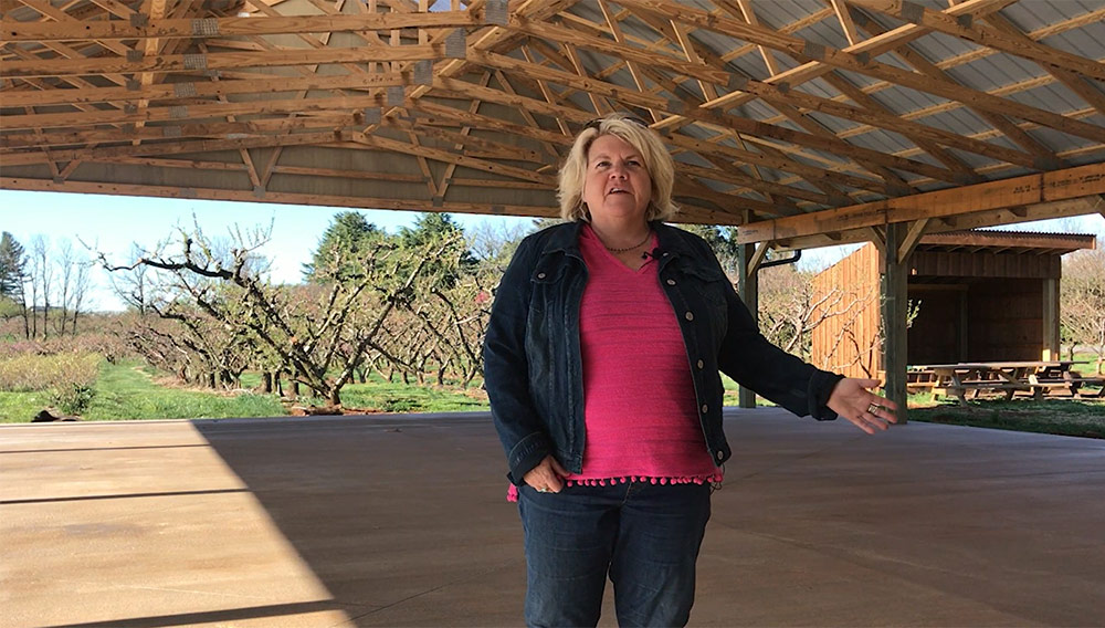 Under the new pavilion at Chiles Peach Orchard