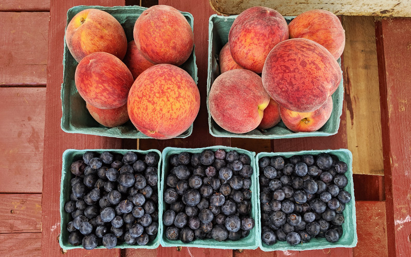 Freshly picked blueberries and peaches at an orchard