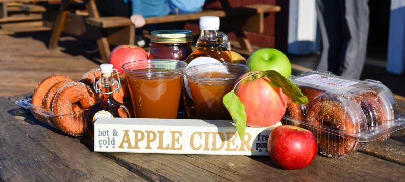 Apples, apple cider, and apple cider donuts at Carter Mountain Orchard in Charlottesville