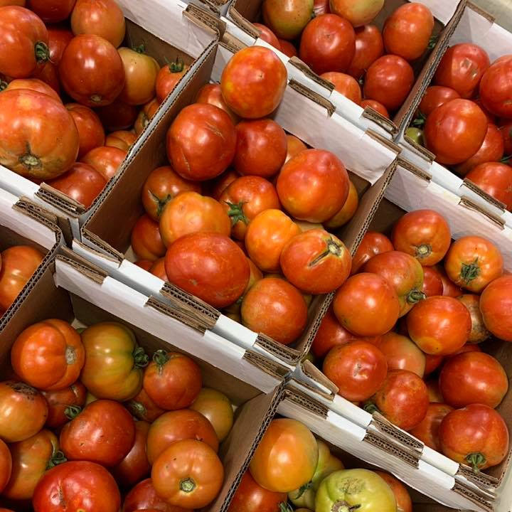 Fresh tomatoes for sale at Chiles Peach Orchard