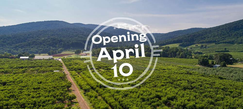 CP: Closed – Open April 10, 2020