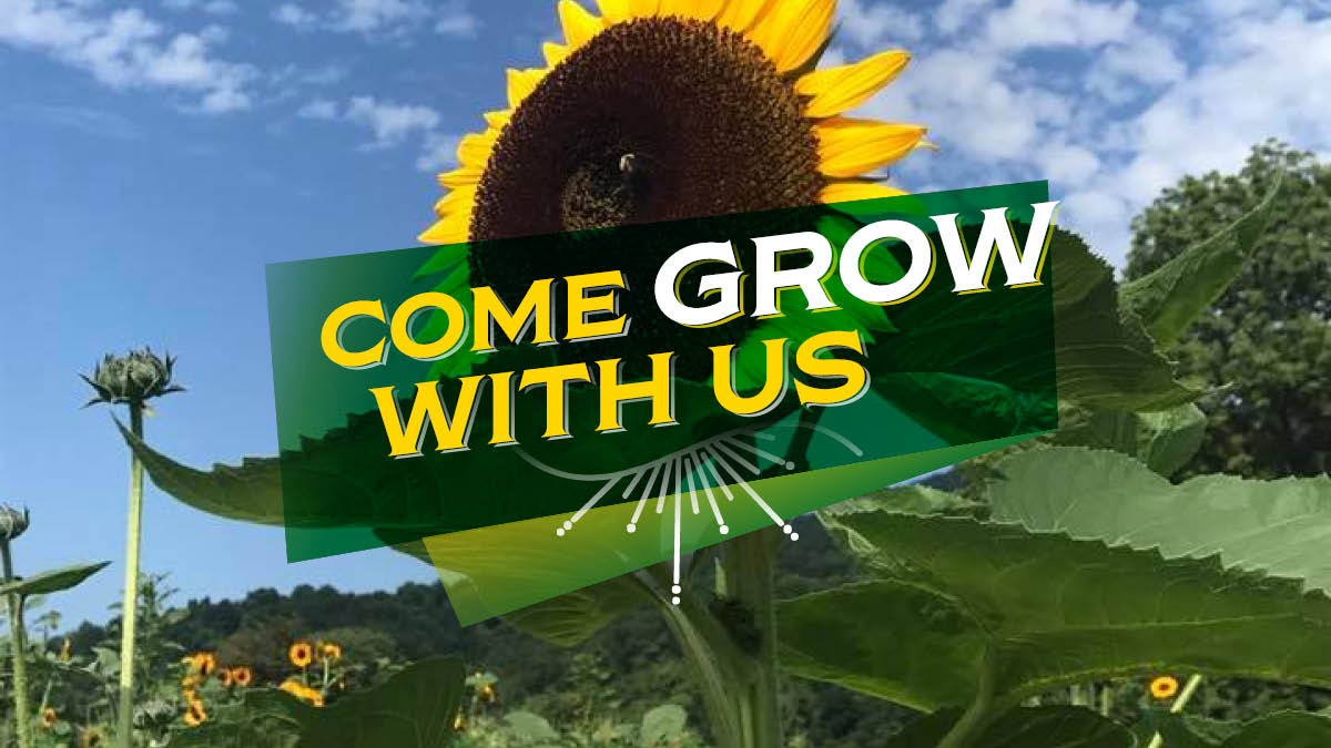 Come Grow with Us children's event at Chiles Peach Orchard