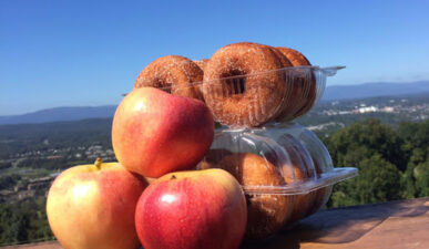Apples with donuts and view