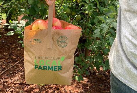 Medium bag of Virginia apples