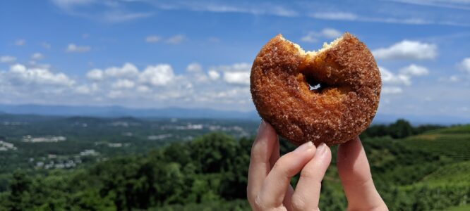 Apple Cider Donut with view from Carter's Mountain