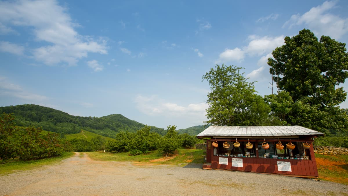 Cherry stand and Blue Ridge Mountains at Spring Valley Orchard