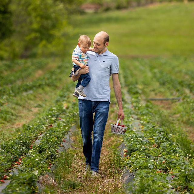 Aaron Watson and son picking strawberries at Chiles Peach Orchard