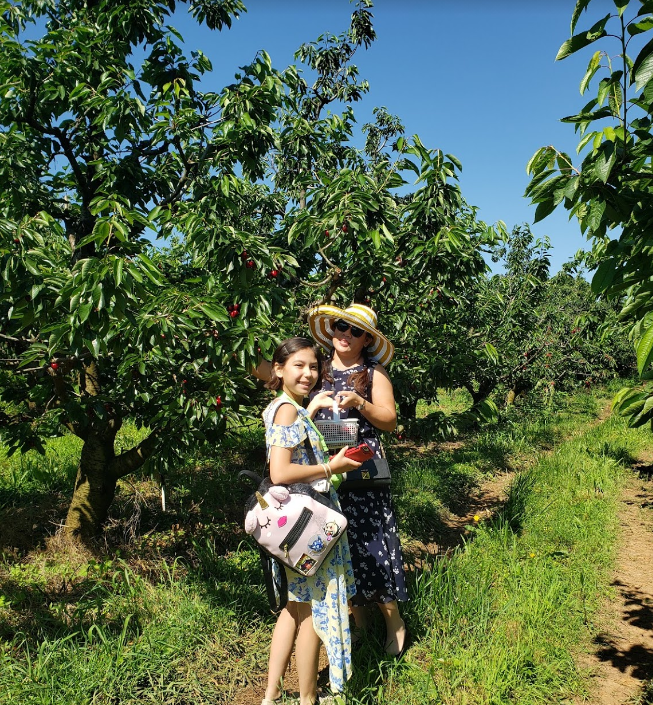 Mother and Daughter picking cherries at Spring Valley Orchard