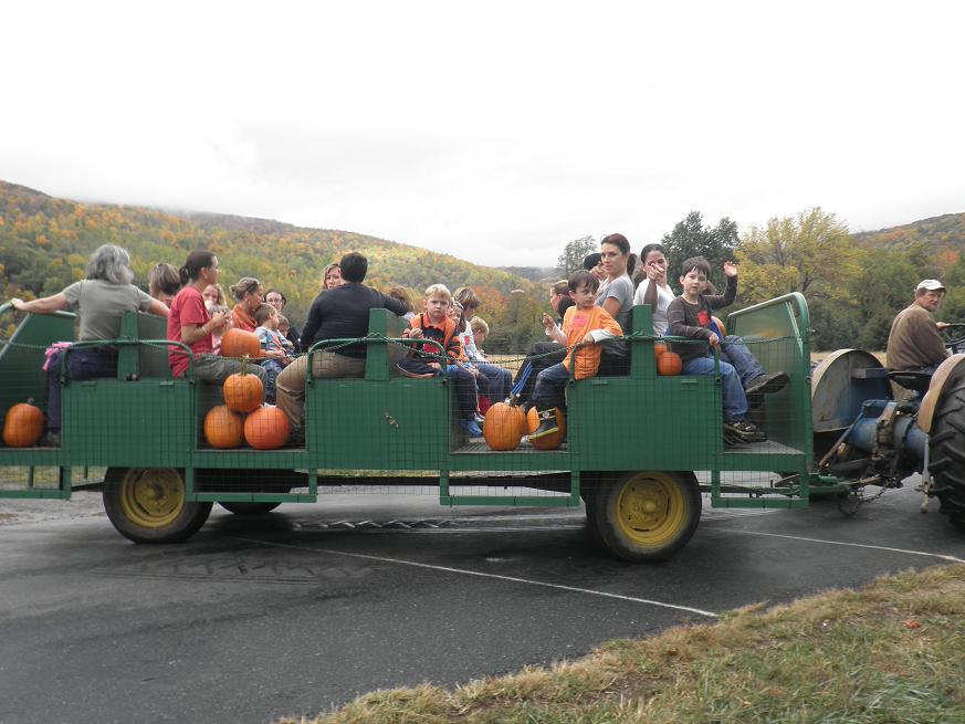 Tractor ride with pumpkins at Chiles Peach Orchard